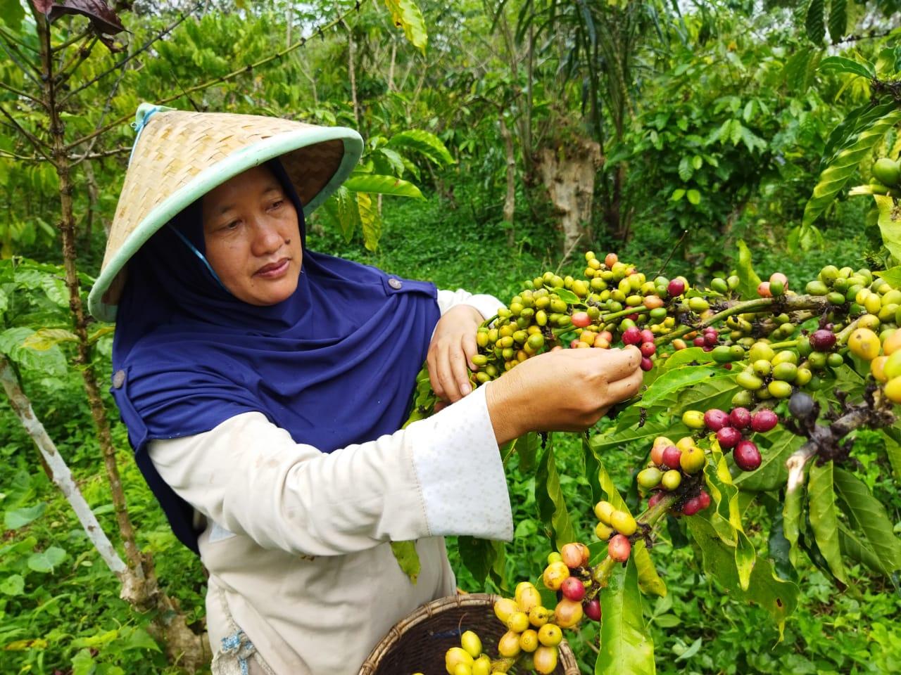Wenni, Asanya untuk Komunitas Adat di Bengkulu